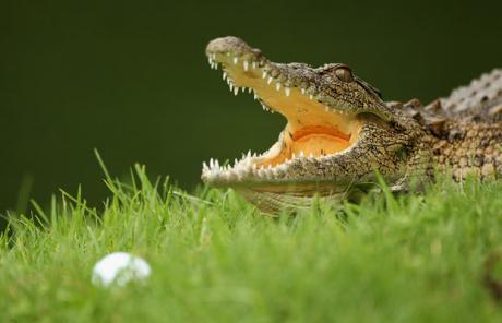 Valkuilen voor golfers